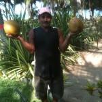 SM's cocos