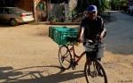 The Bolillo Man,bread roll delivery